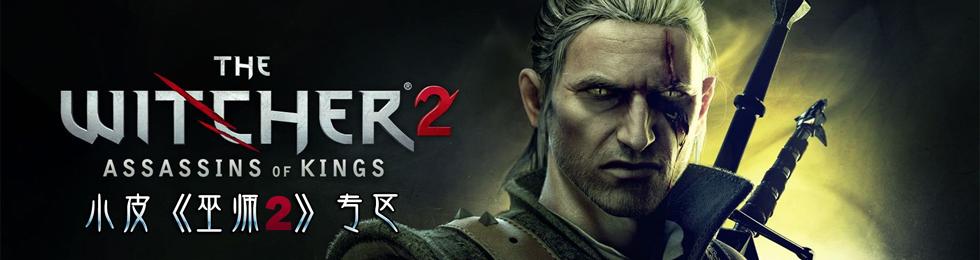 巫师2:刺客之王