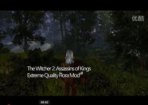 《巫师2》丧心病狂植被强化Mod欣赏 显卡吃力!