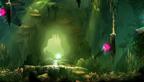 奥日与黑暗森林快速全收集视频攻略第一章