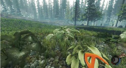 森林0.07版上手解说视频