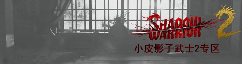 影子武士2