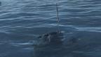 猎杀潜航5手动鱼雷填空视频教学