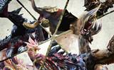 怪物猎人XX特典兑换方法 怪物猎人XX特典兑换图文攻略