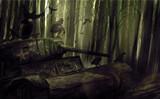 阴暗森林存档位置在哪 PC版游戏存档位置说明