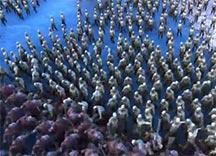 史诗战争模拟器娱乐解说视频 斯巴达勇士VS生化丧尸