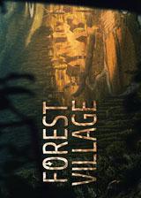 领地人生:林中村落免安装中英文未加密版