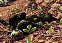 风起云涌2:越南全武器装备及兵种解析攻略指南
